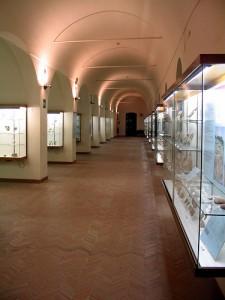 ridola_museo2