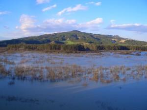 oasi-san-giuliano