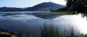 oasi-wwf-lago-di-pignola
