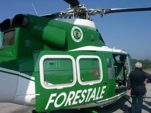 elicottero_forestale